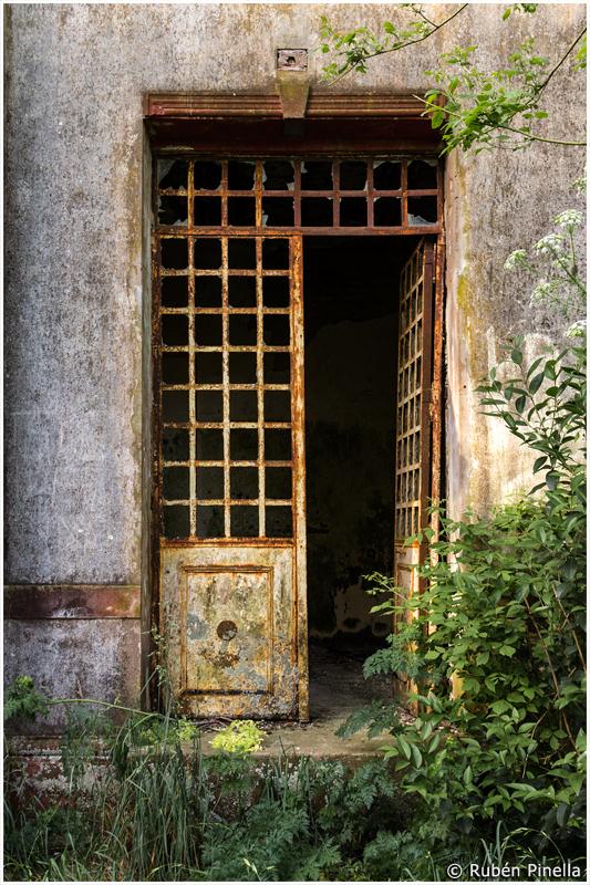 Puerta #31