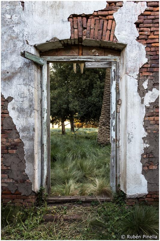 Puerta #35