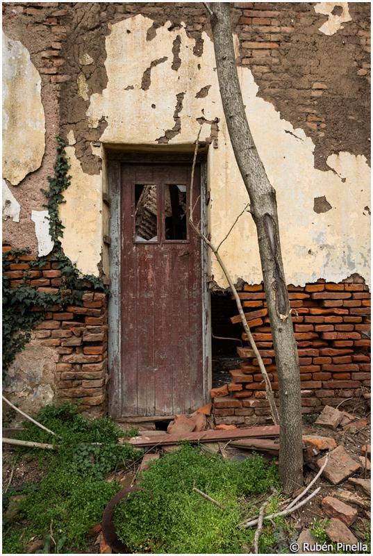 Puerta #55