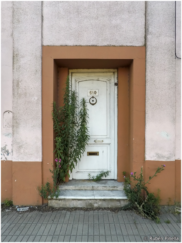 Puerta #123