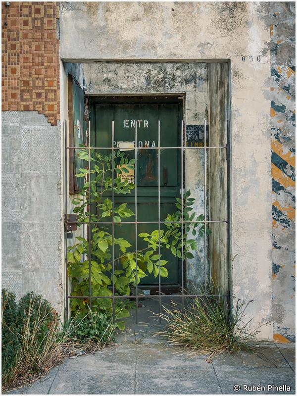 Puerta #145