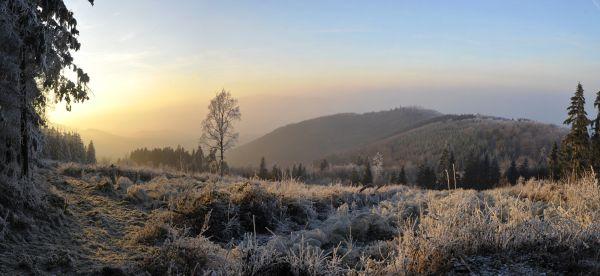 paysage des monts du lyonnais à saint bonnet