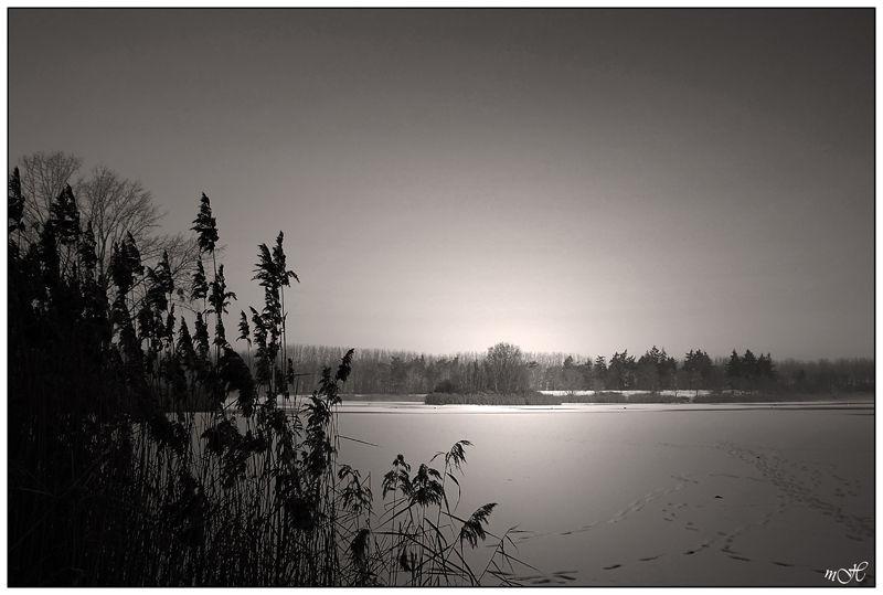 Traces de pas sur le lac.