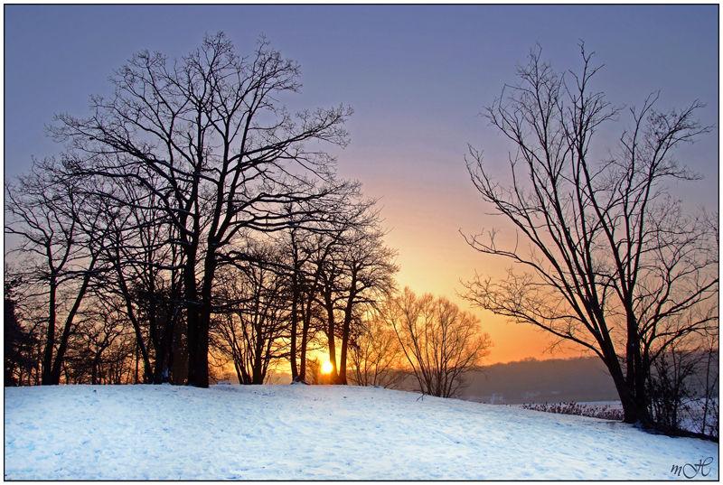 Un matin d'hiver