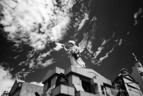 La Recoleta Cemetry (infrared), Buenos Aires