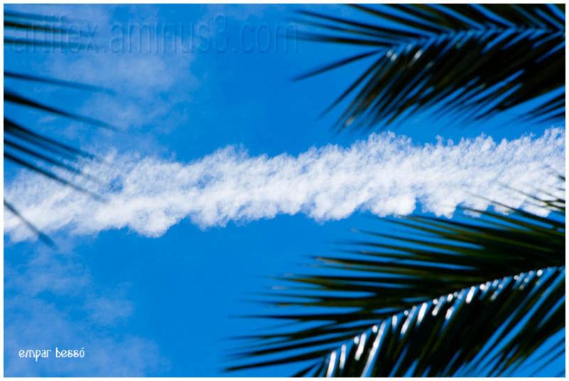 avión en el cielo/ a plane on the sky I