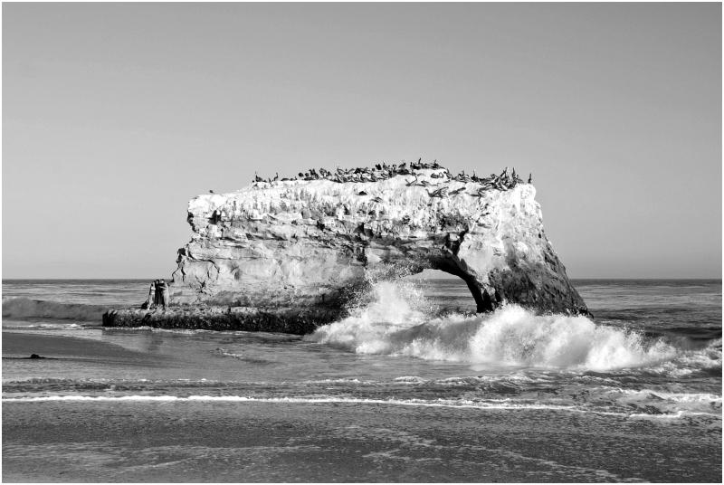 Natural Bridges State Beach II