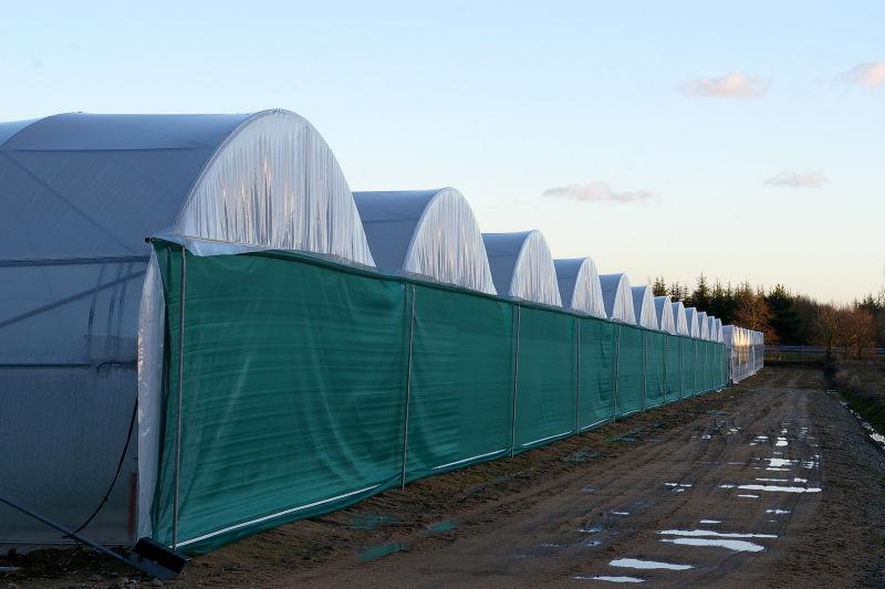 A few greenhouses...
