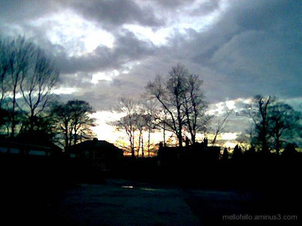 Then Cometh Twilight