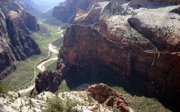 angels landing from observation point