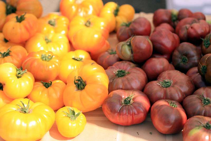 tomatoes in the sun on a table at farmers market