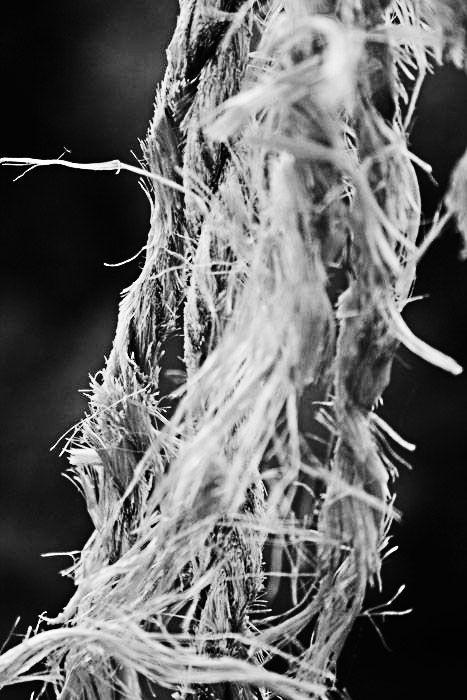 The rope - La corde