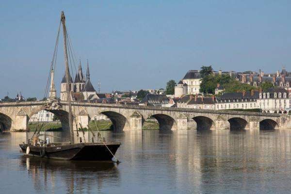Un gabar(r)e sur la Loire