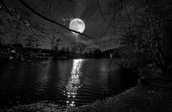 La lune bleue