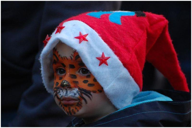 Le tigre de Noël