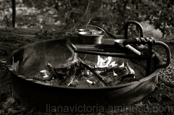 making breakfast while camping with friends
