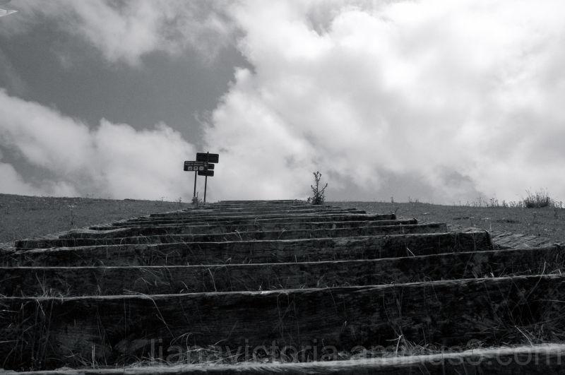 stairway to upper pastures