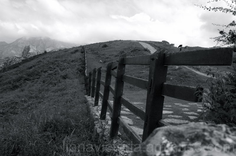 farm fence in the mountains
