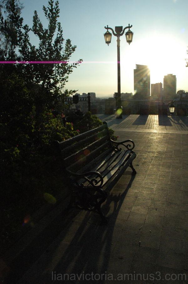 setting sun in a park