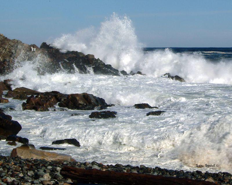 Crashing Ocean Waves Landscape Amp Rural Photos Tamra S
