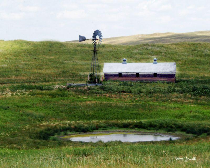 Windmill in Sandhills