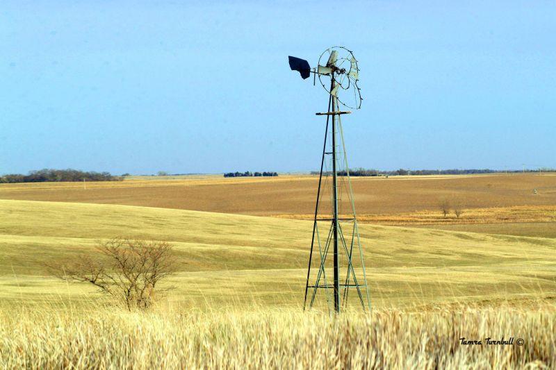 Windmill in western Nebraska