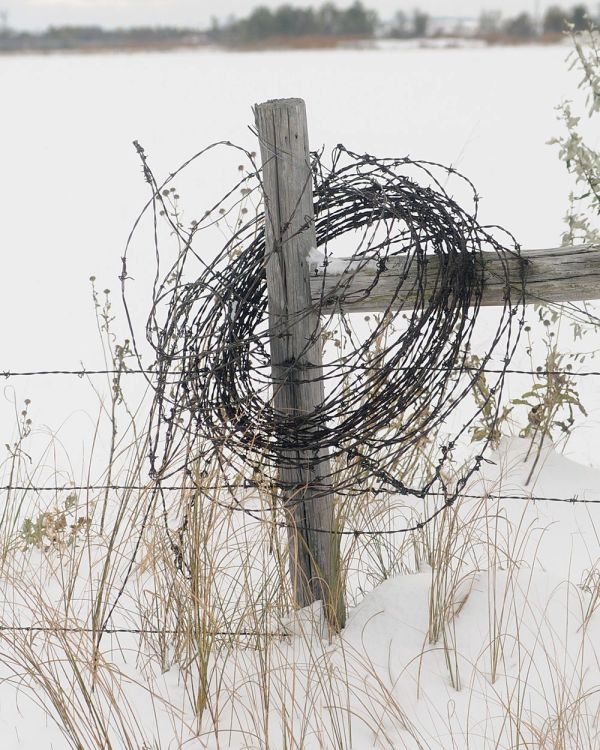 Barbed wire on a snowy fence post
