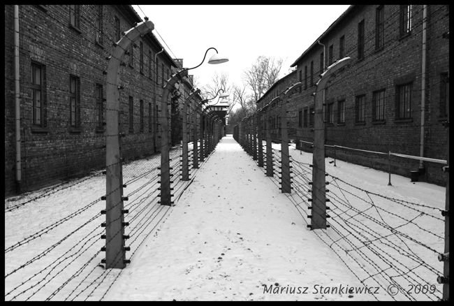 Poland - Auschwitz, concentration camp