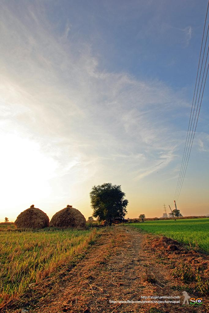 Rural Land Scape