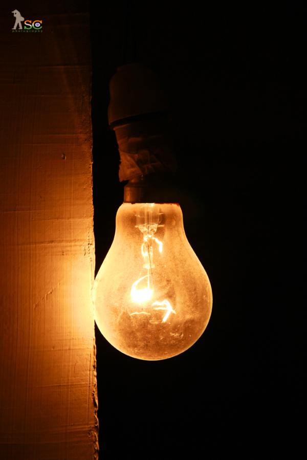 Light: Source of Life