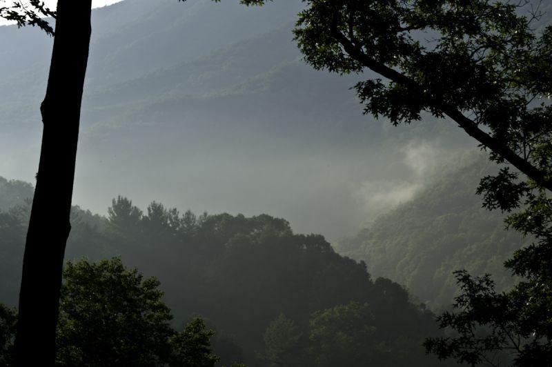 Mountain mist II...