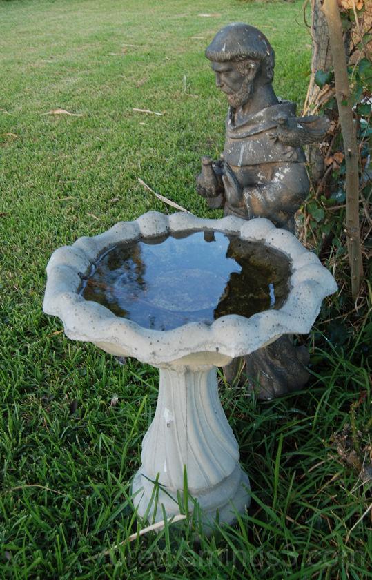 Saint Francis reflecting in a bird bath