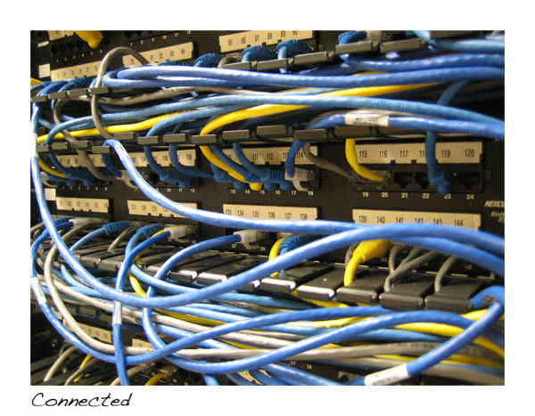 A picture of networking cables
