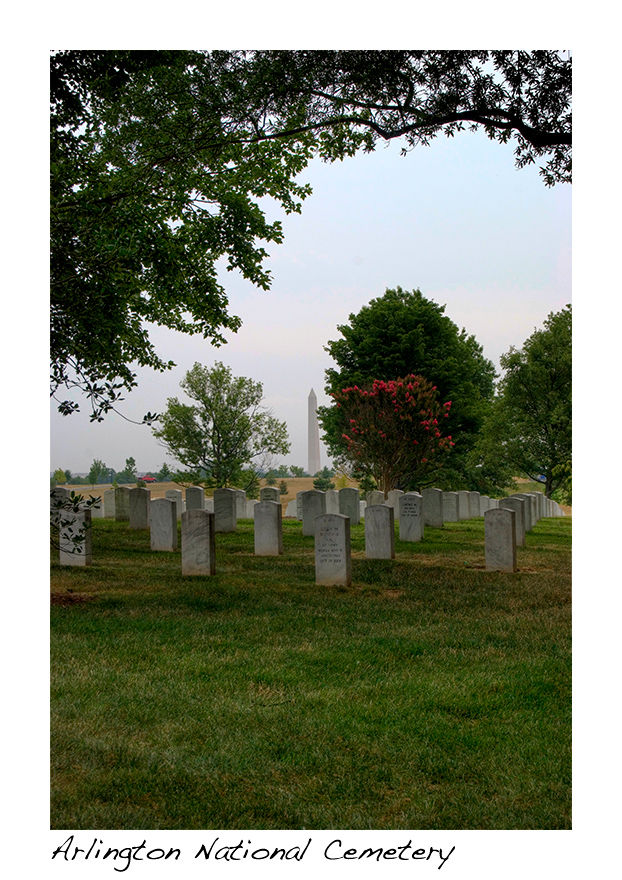 A picture of Arlington National Cemetery