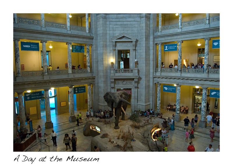 A picture of the Natural History Museum