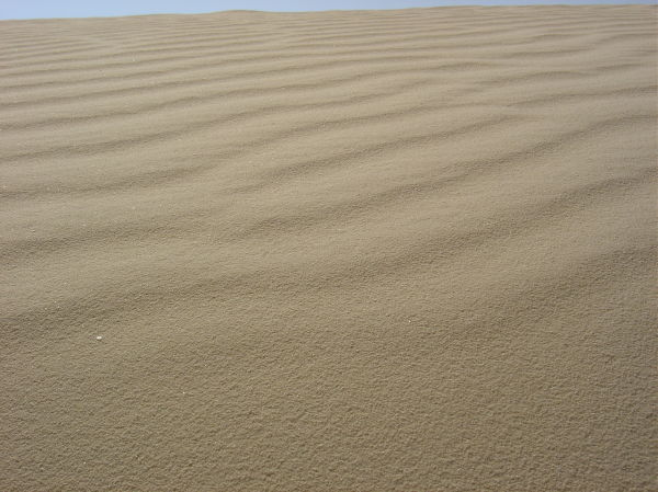 Desierto I