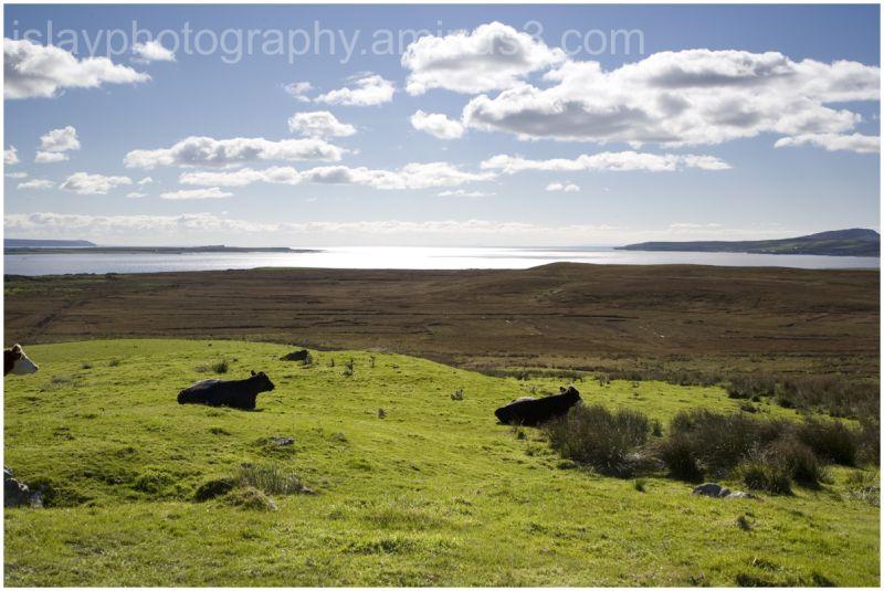 Loch Gruinart from  Carrabus