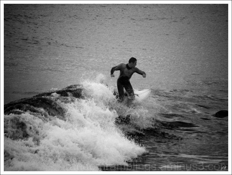 Surfing In Cromer