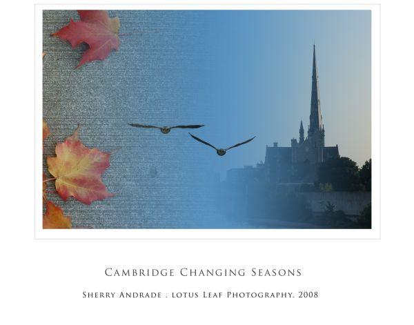 Season, Cambridge