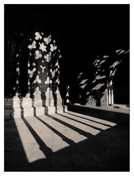 Claustre a la Seu Vella, Lleida