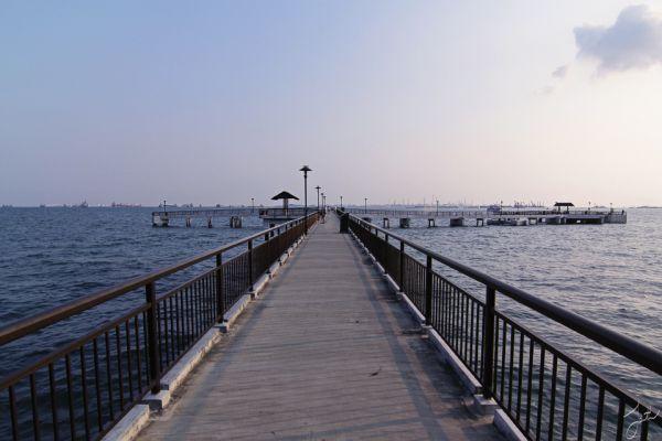 labrador jetty 3