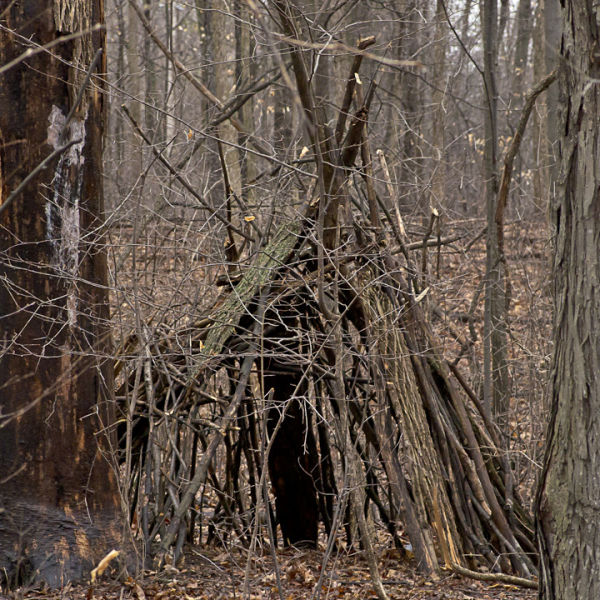 Kid Built Forest Tipi