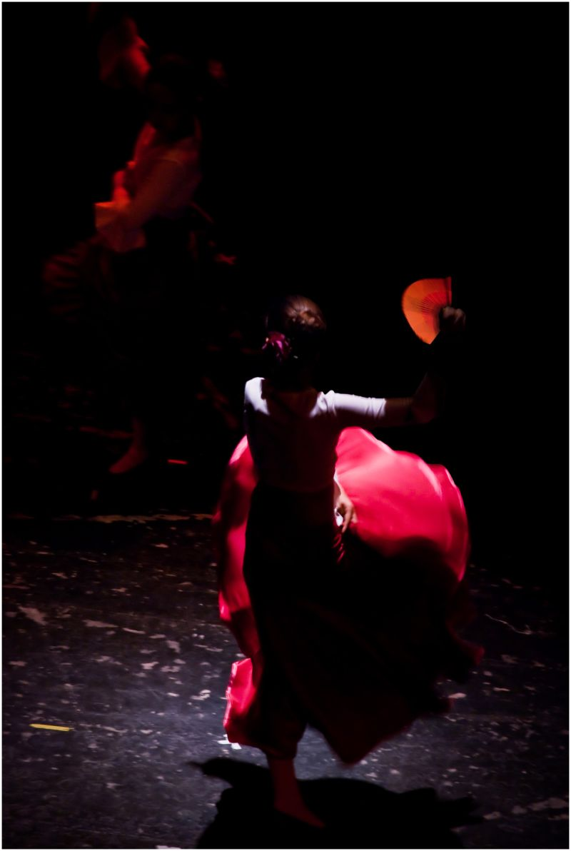 A Beautifull Picture of two Sevillana Dancers