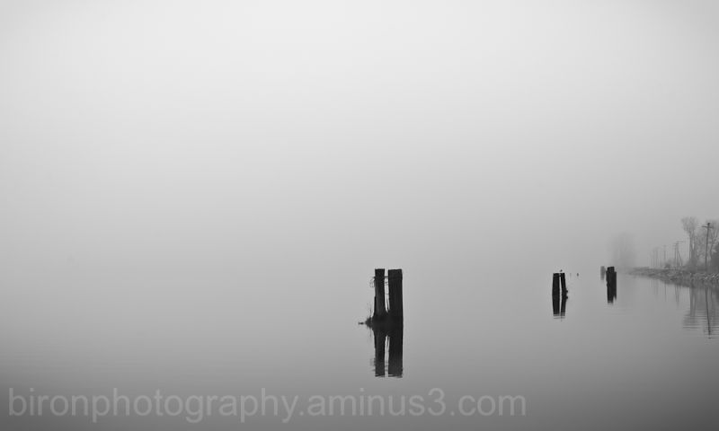 Fog on Water