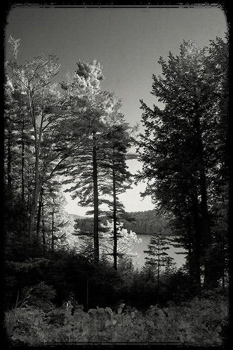 Lake Nubenussitt
