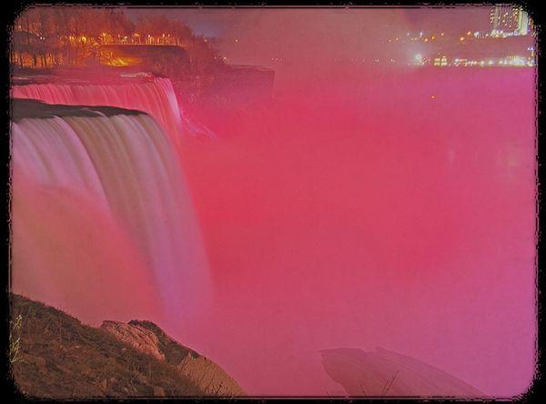 Red Niagara