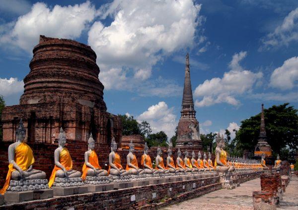 Buddha's amongst temple ruins, Ayuthaya, Thailand.