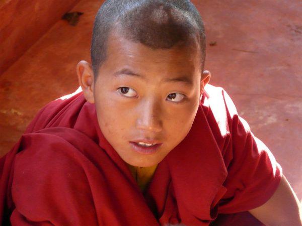 youg monk in a tibetan school