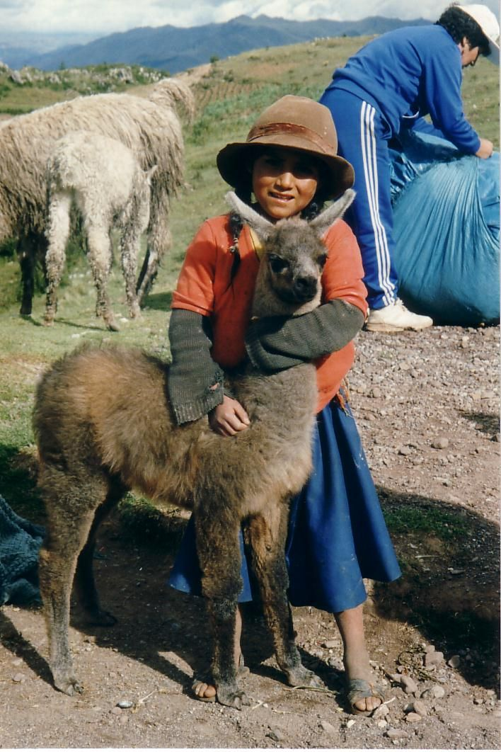 young child and his lama