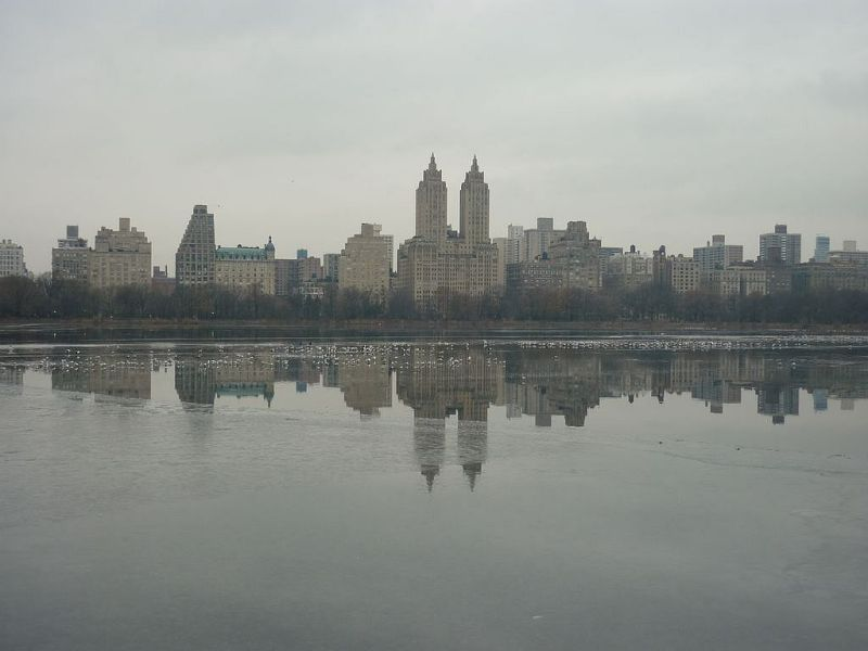 Central Park, sunday morning in winter